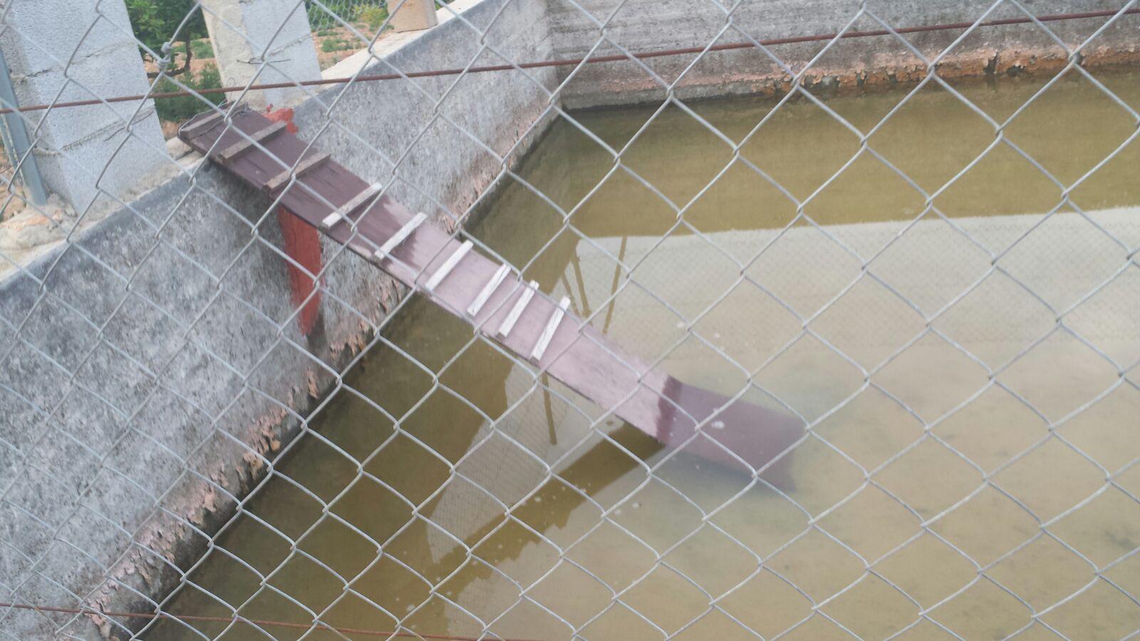 10. Rampa para evitar el ahogamiento de animales